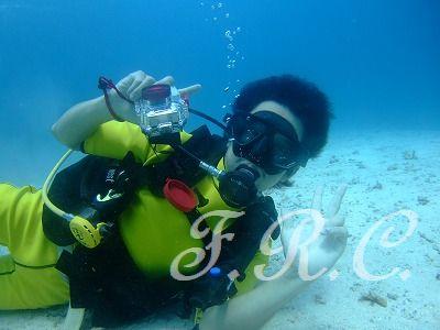 オプショナルツアースパ観光体験ダイビング