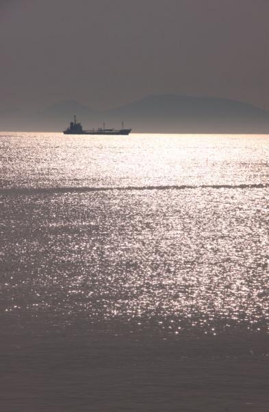 IMG_2959海