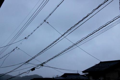 IMG_4259電線