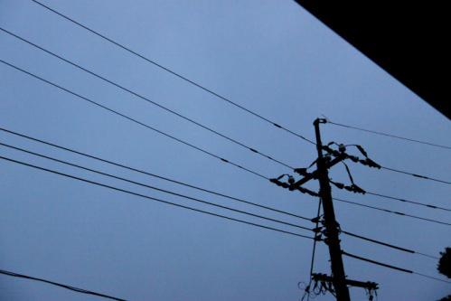 IMG_4262電線