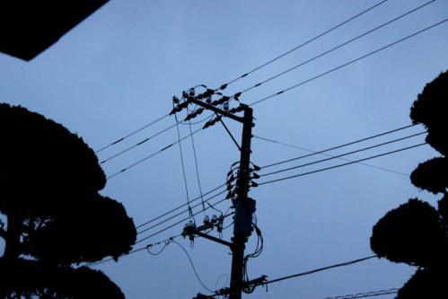IMG_4265電線