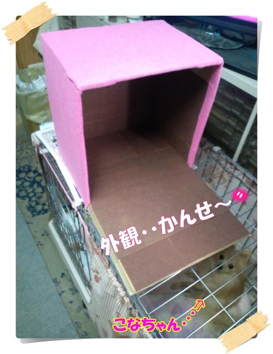ハウス改造中③