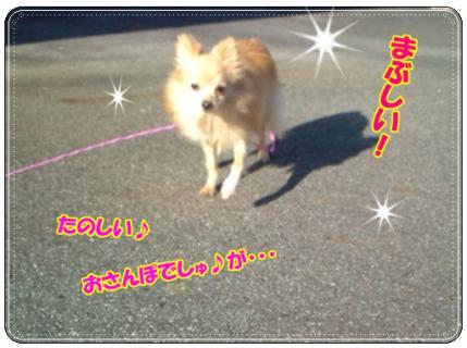 20121119140328.jpg