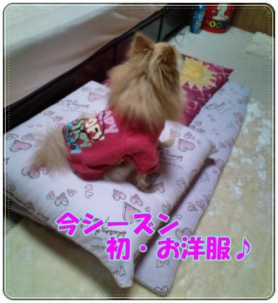 20121203初お洋服