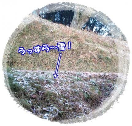 20121209うっすら雪