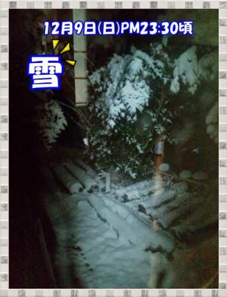20121210夜雪