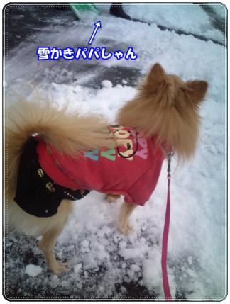 20121210雪かきパパ