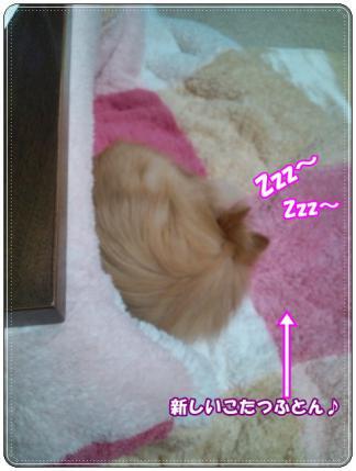 20121211寝てます