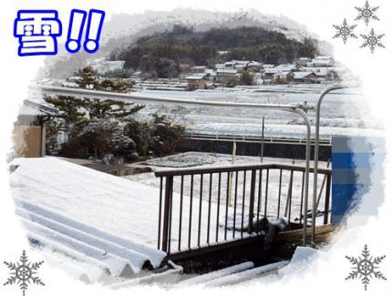 20121226雪