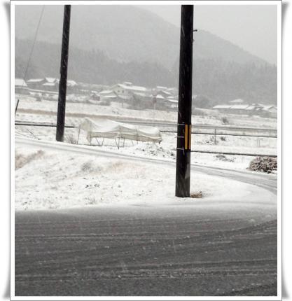 20121228雪