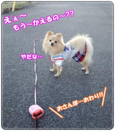 20130103おさんぽ7