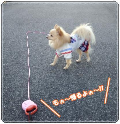 20130103おさんぽ6