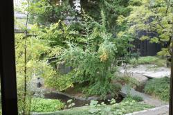 ヒカリヤ庭