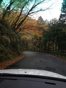 強羅への道