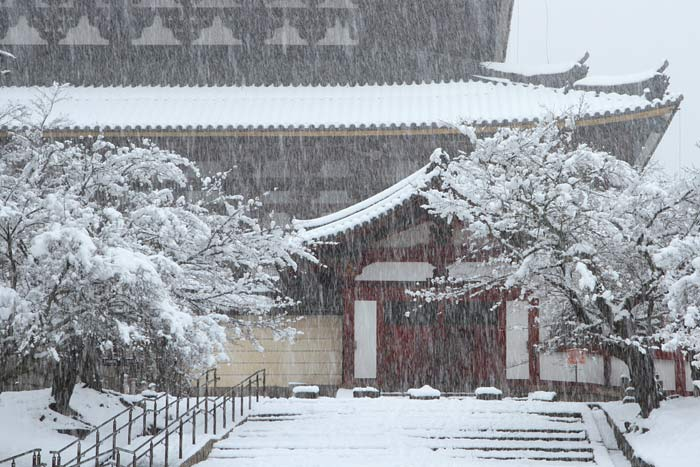 東大寺 雪景色3