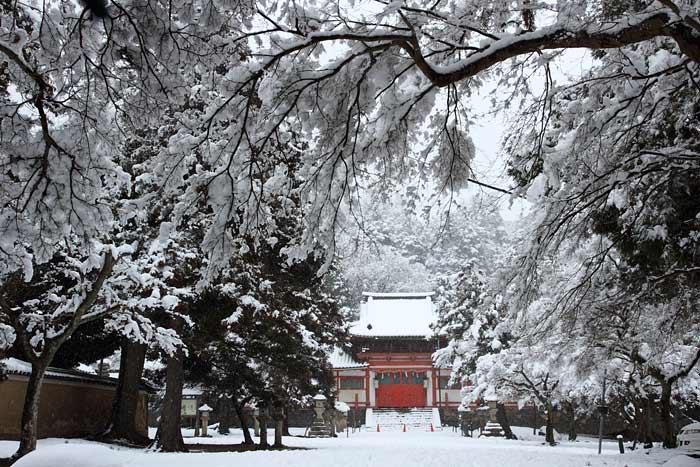 東大寺 雪景色6