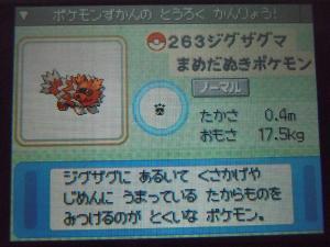DSCN0393_convert_20130610003020.jpg