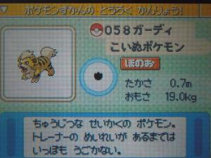 DSCN0422_convert_20130621205541.jpg