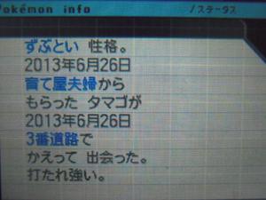 DSCN0432_convert_20130710200126.jpg