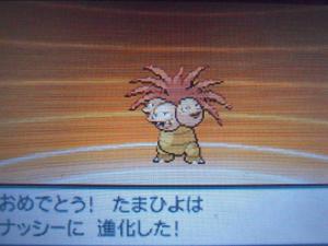 DSCN0445_convert_20130710200409.jpg