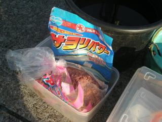 sayoripawa-