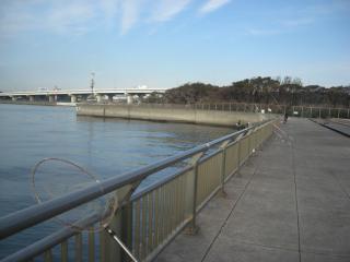 nishikoeun2.jpg