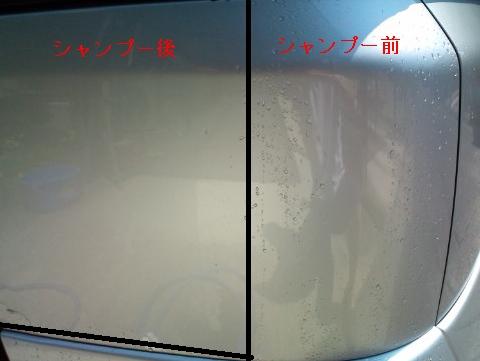 F1000136_2.jpg