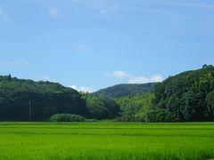 [写真]梅雨明け間近の三舟山