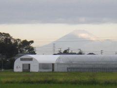[写真]ポレポレ農園の後ろに見える富士山