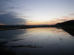 11月の夜明け風景
