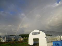 休憩ハウスに虹が降りた様子