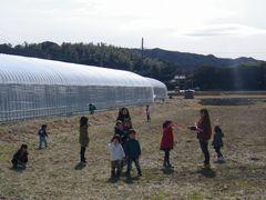 [写真]いちご狩りが終わった後に広い畑で遊ぶ子供たち