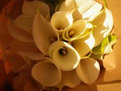 [写真]白いカラーのミニブーケ