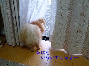 9A_rGLEgd0P8if7.jpg