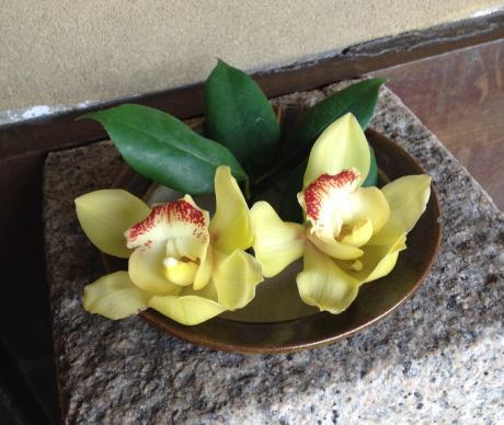 旅館倉敷の花