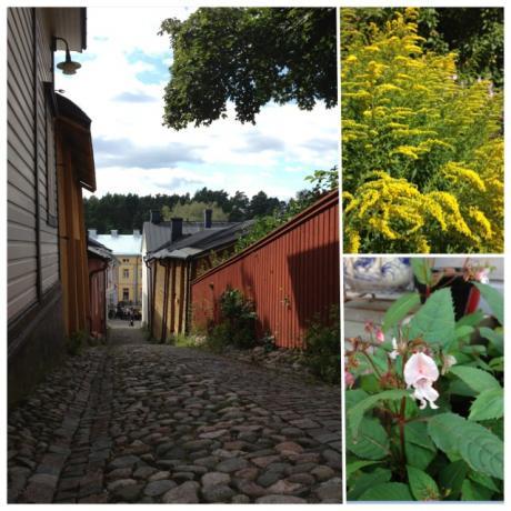 3種、石畳と花