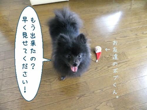 20120524_1.jpg