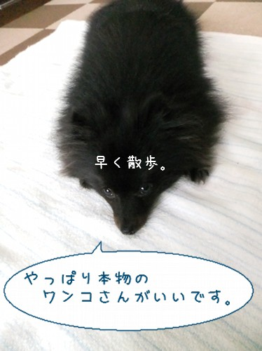 20120524_9.jpg