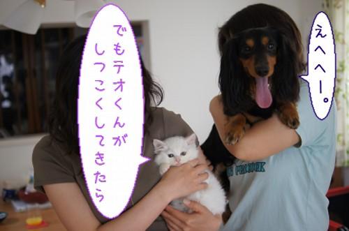 20120527_4.jpg