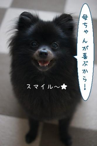 20120611_7.jpg