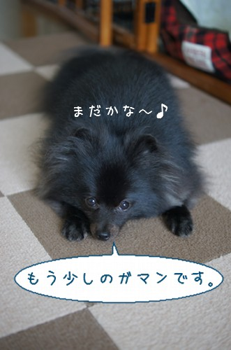 20120614_4.jpg