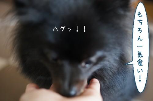 20120614_6.jpg