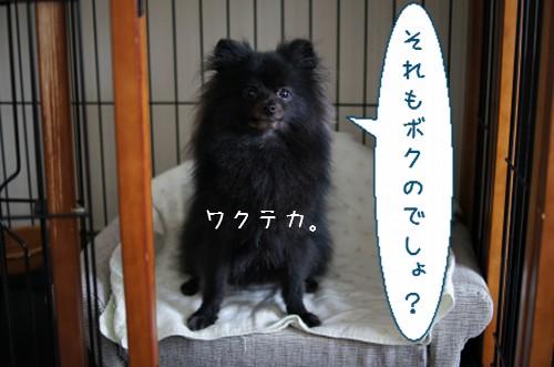 20120622_11.jpg