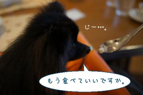 20120709_7.jpg