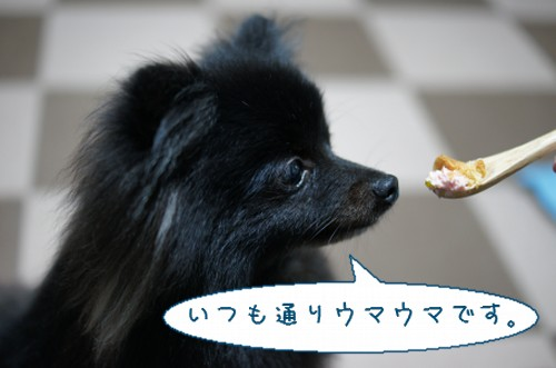 20120710_3.jpg