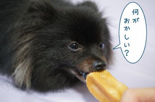 20120718_7.jpg