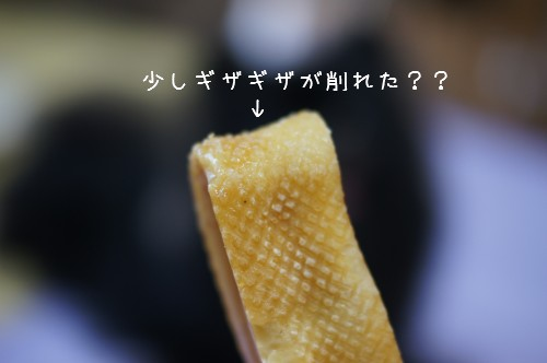20120718_9.jpg