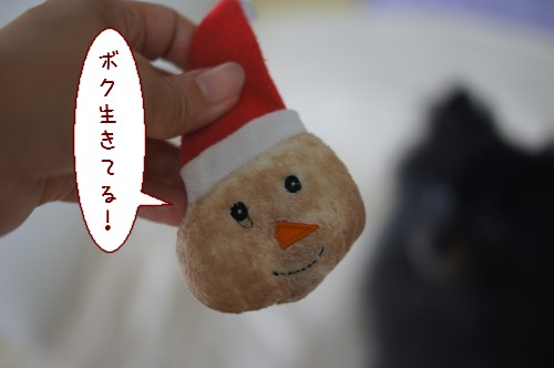 20120727_7.jpg