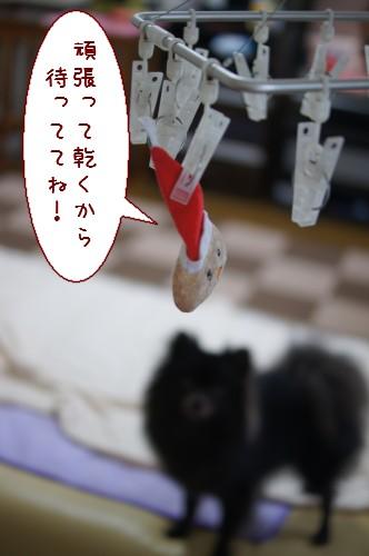 20120727_9.jpg