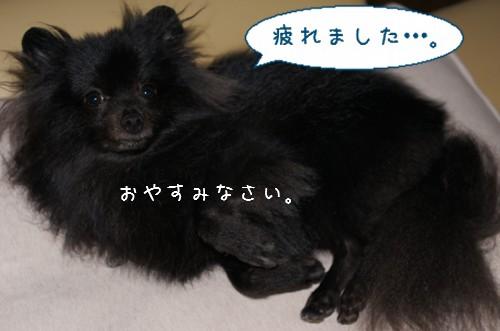 20120806_14.jpg